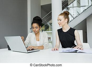 joven, oficina, mujeres