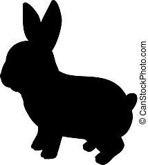 joven, rabbit., lindo, silueta, animal., poco