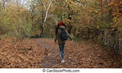Joyful girl with dog running in autumn park - Back view of...