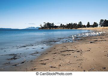 Jubilee beach in the town of Swansea, Tasmania.