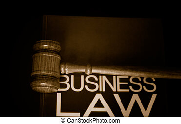 judges gavel on a business law book