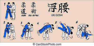 Judo and Jiu jitsu Martial Art Technique