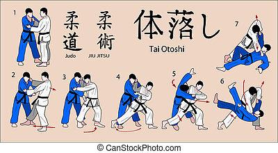 judo, techniek