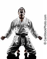 judoka fighter man silhouette - one judoka fighter man in...