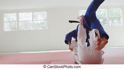 Judokas fighting and immobilizing on the ground - Rear view ...