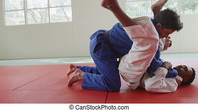 Judokas fighting and immobilizing on the ground - Side view ...