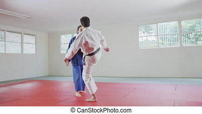 Judokas training by doing a randori on the judo mat - Rear ...