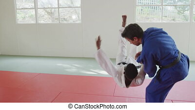 Judokas training by doing a randori on the judo mat - Side ...