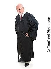 juez, serio, cuerpo lleno, -