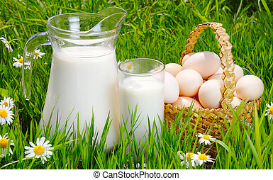 Jug and glass of milk with eggs, grass and daisies