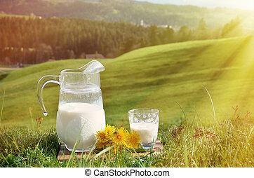 Jug of milk. Emmental region, Switzerland