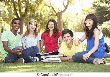 jugendlich, gruppe, plaudern, studenten, park, zusammen