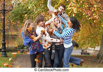 Jugendlich, Gruppe, Werfen, Blätter, Herbst,  friends, landschaftsbild