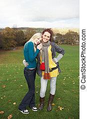 Jugendlich, Gruppe, zwei, Herbst, weibliche,  friends, landschaftsbild