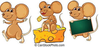 juguetón, ratones, tres