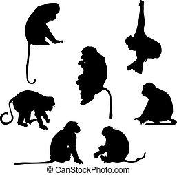 juguetón, siluetas, mono