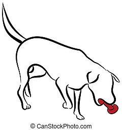 juguete, labrador, resumen, perro, elegante, mascar