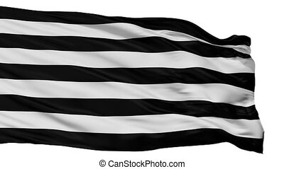 Jui Flag Isolated Seamless Loop