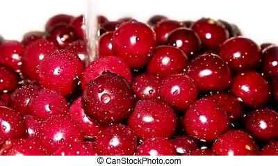 Juicy cherry in water
