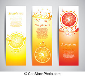 Juicy citrus splashes banners, vector - Citrus in juicy...