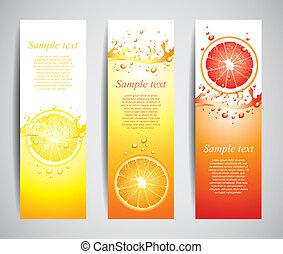 Citrus in juicy splashes set of banners in vector