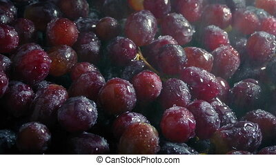 Juicy Grapes Getting Sprayed With Fine Mist - Delicious red...