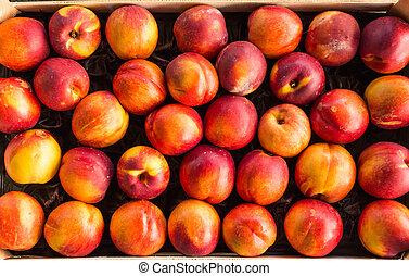 juicy peaches 2