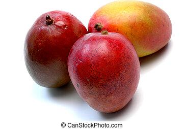 juicy ripe mangoes