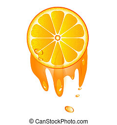 Juicy slice of orange fruit