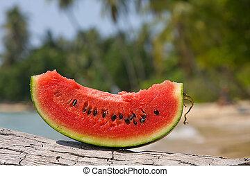 Juicy slice of watermelon