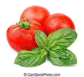 juicy tomatoes and basil