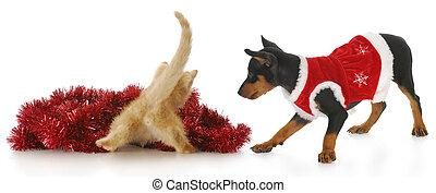 jul, killingen, og, hundehvalp