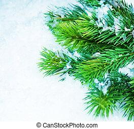 julgran, över, snow., vinter, bakgrund