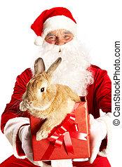 jultomten, med, söt, kanin