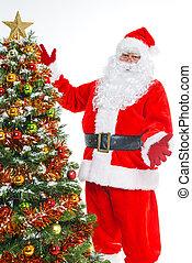 jultomten, och, julgran, isolerat
