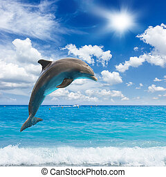 jumping dolphins, sunny seascape with deep ocean waters