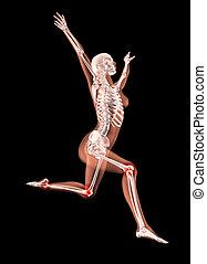 Jumping female medical skeleton