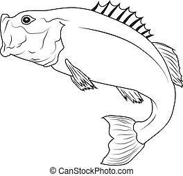 Jumping Fish - Jumping Bass Fish Outline Illustration