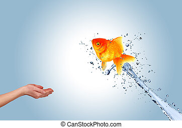 Jumping fish into hand, concept of challenge