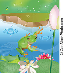 Jumping frog in pond with lotus and water lily in the rain
