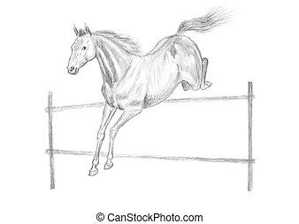 Jumping horse drawing