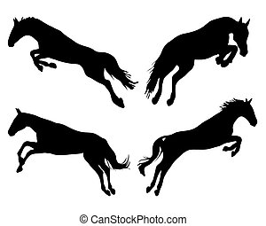 jumping of horses