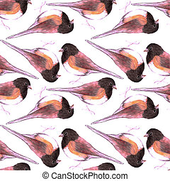 junco, escuro, seamless, pássaros, aquarela, pássaro, eyed,...