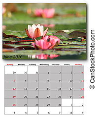 june nature calendar page layout