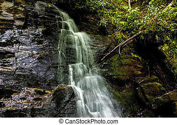 juney whank water falls in great smoky mountains