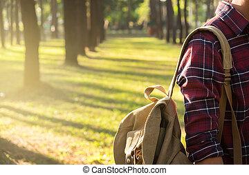junger mann, reisender, mit, rucksack, entspannend, draußen, hintergrund, sommer, urlaube, und, lebensstil, wandern, concept.