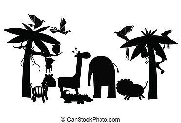 jungle, amis, contour