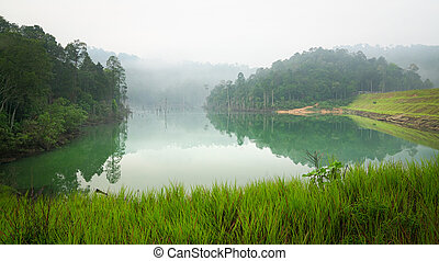 Jungle and lake landscape