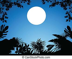 jungle at night - illustration of jungle at night