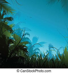 jungle, baggrund